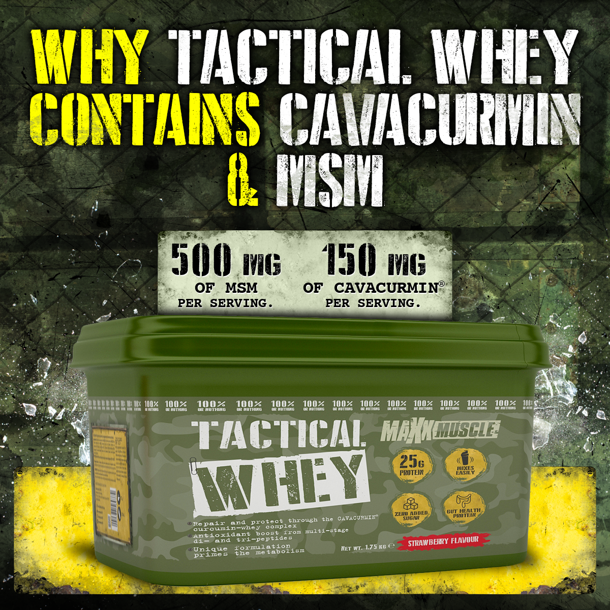 Blog - Why Tactical Whey Contains Cavacurmin & MSM